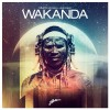 Dimitri Vegas & Like Mike – Wakanda
